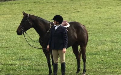 Rummy – fox hunter and eventer