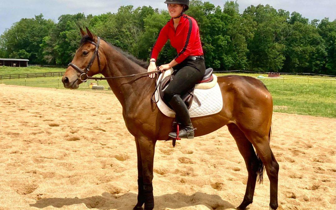 She's Right – OTTB mare